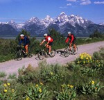 Jackson Hole Package Trips
